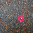 Janice Wong, Artwork - poppy copper dot heart